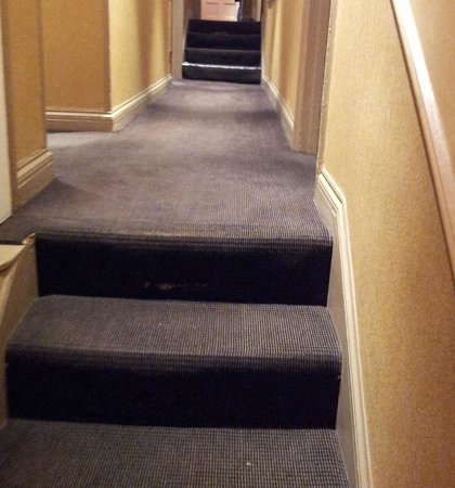 Collingham Serviced Apartments: Steps from front desk