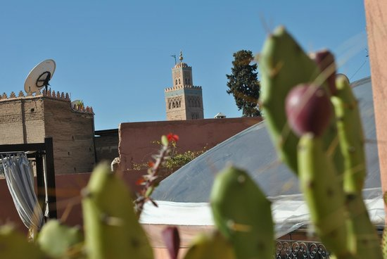 Riad Al Rimal: Vue terrasse