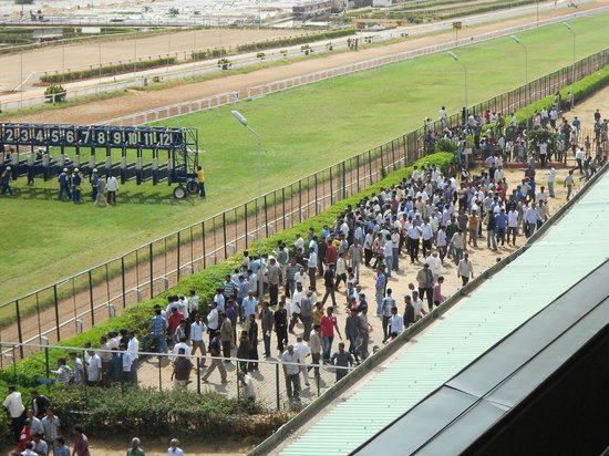 Bangalore Turf Club Race Course: race is about to start