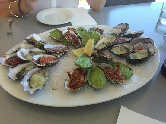 how to get to a oyster farm in tasmania