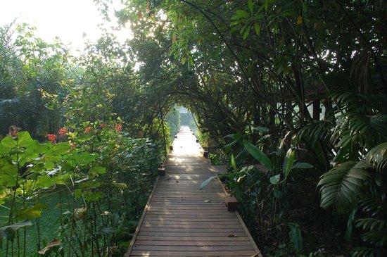 Jetwing Kurulubedda: In the garden