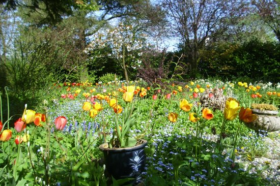 Struther Farmhouse: Garden in Spring
