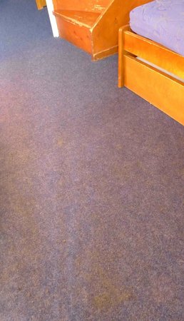 Silveralp: Revolting state of stained and smelly carpet