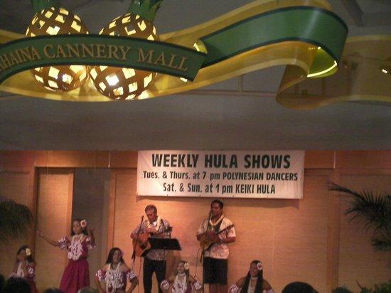 Lahaina Cannery Mall Free Hula Shows: Weekly Hula Shows 1