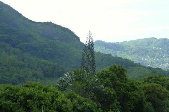 Copolia Lodge: Vue d'une des terrasses