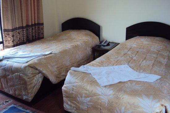 Pokhara Village Resort : lake face room