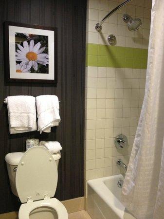Soaring Eagle Waterpark and Hotel: Bathroom