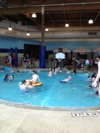 Soaring Eagle Waterpark and Hotel: Basketball in the pool