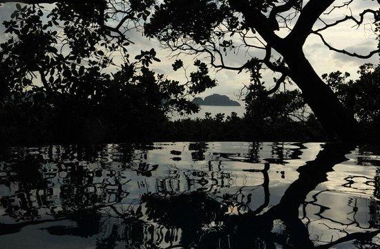 El Nido Overlooking: бассейн