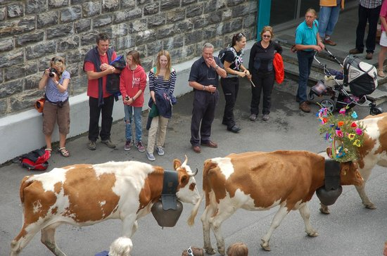 Eiger Guesthouse: Village parade in August