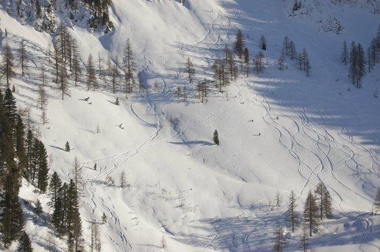 Obertauern Ski Resort: Free ride