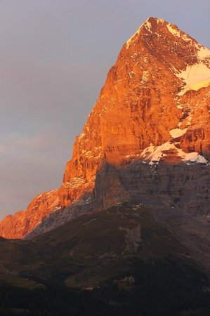 Eiger Guesthouse: Eiger
