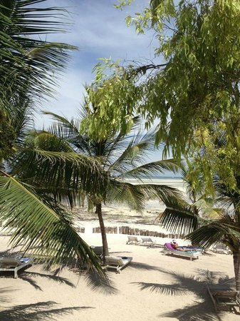 Jacaranda Beach Resort: Spiaggia davanti all'hotel