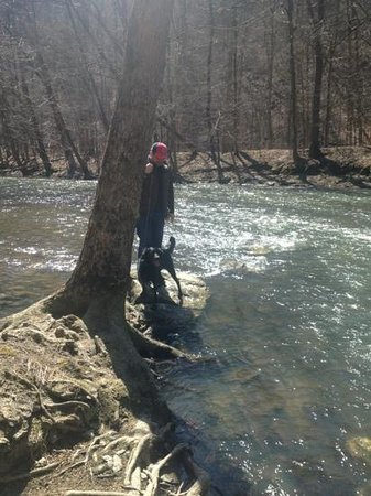 Mohican State Park: hiking along the gorge