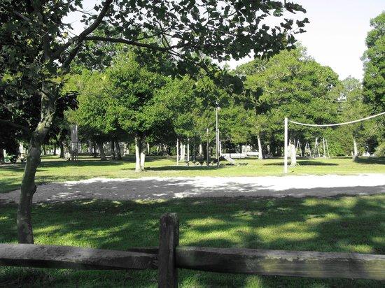 John F. Kennedy Park: Park/Picnic area!