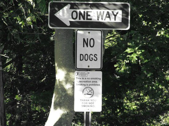 John F. Kennedy Park: ...'NO DOGS'...... not even little toy canines :-(