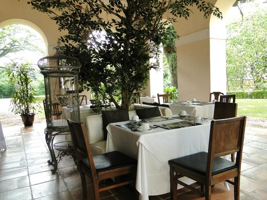 Suffolk House: Outside dining area