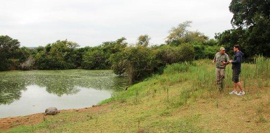 Schotia Safaris Private Game Reserve: Der Ranger und ich