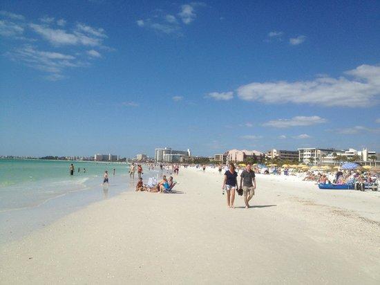 Tropical Beach Resorts: Beach Area
