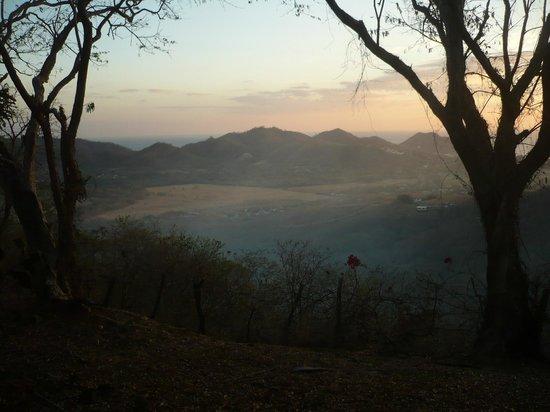 Finca Las Nubes: Finca view