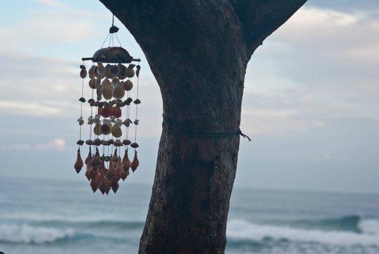 Hooked Cabarete: Windplay Encuentro
