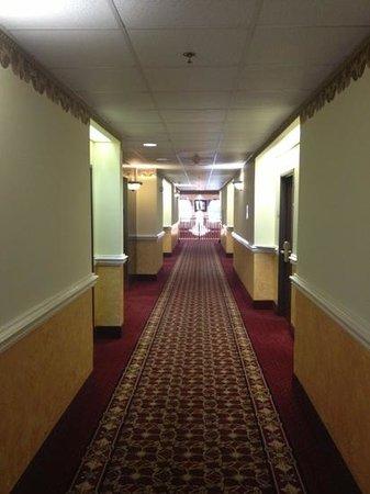 Comfort Suites: 2nd floor hall