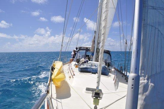 La Boheme Charters: La Boheme from the bow
