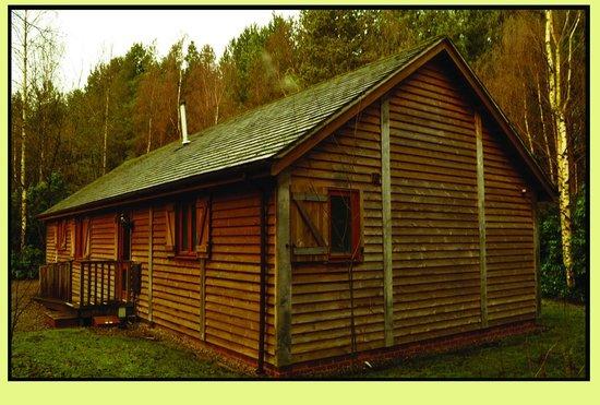 Griffon Forest Lodges照片