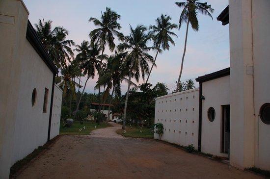 Villa Sunbird : Entrance of the villas