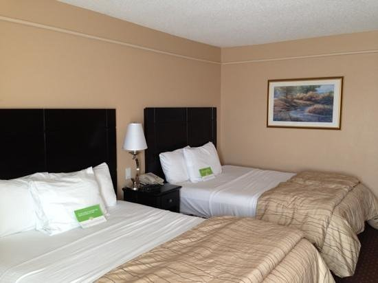 La Quinta Inn & Suites New Braunfels: room