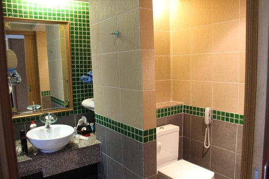 Blue Ocean Resort: The toilet and wash basin
