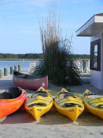 Snug Harbor Marina Boat Rentals: Kayaks and Canoes Rentals