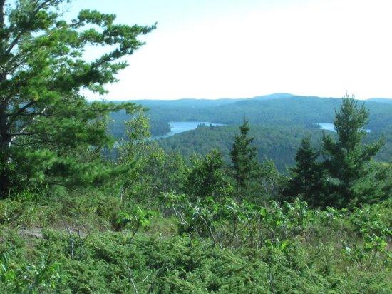 Greenstone Ridge Trail: Views from the Greenstone
