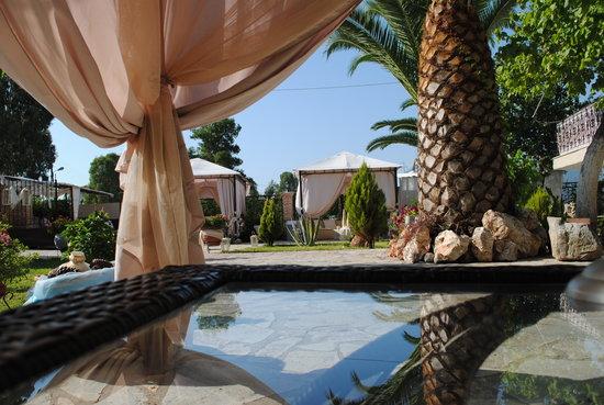 Villa Olga Hotel Apartments & Studios 사진