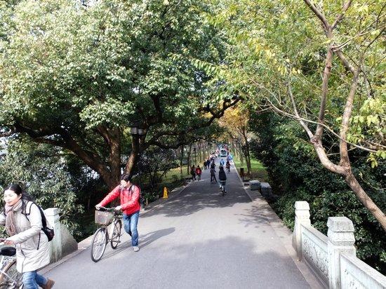Dam Su: Bikes too