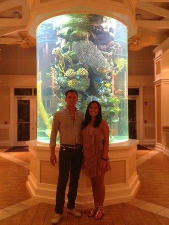 DoubleTree by Hilton Hotel Grand Key Resort - Key West: The lobby fishtank