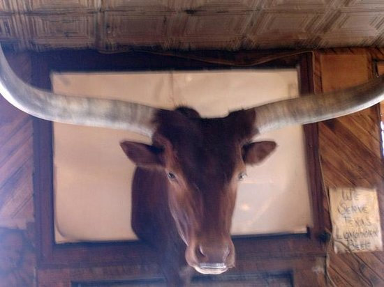 The Meers Store And Restaurant : A stuffed long horn stares you down while you get stuffed.