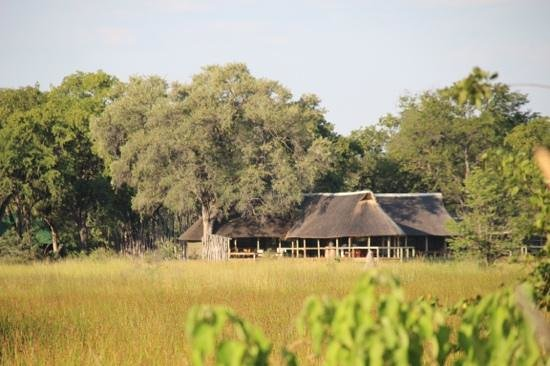 Wilderness Safaris Banoka Bush Camp: Banoka common area