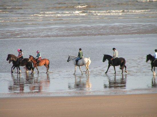 Pevensey Bay Beach: Everyone likes the beach