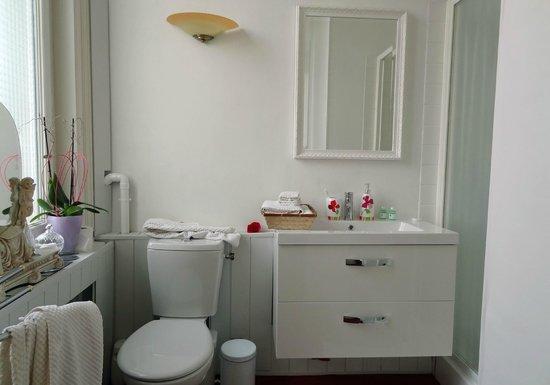 La Villa De La Paix : Low water pressure in shower, plumbing issue. Very clean.