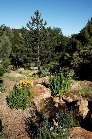 Orchard Hill Country Inn: Grounds