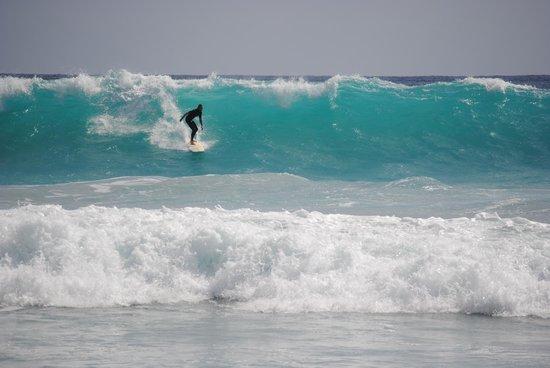 Juno Beach Pier: Juno Beach Surf Report