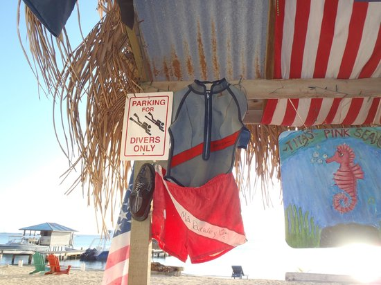 Tita's Pink Seahorse Bar: Eat, Sleep, DIVE...and a Tiki Bar on the Beach!