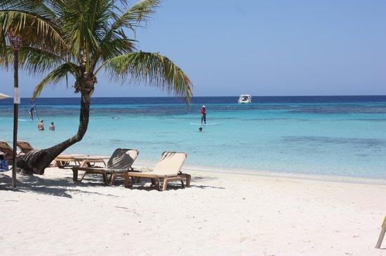Infinity Bay Spa and Beach Resort: Stunning beach!
