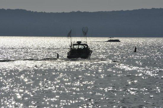 Daydreamer fishing charters traverse city mi omd men for Michigan city fishing charters