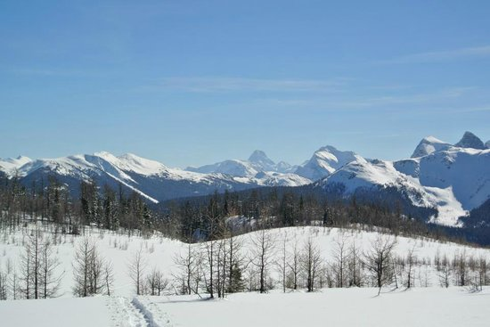 Shadow Lake Lodge: View of Mount Assiniboine from Gibbon Pass