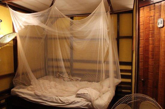 Coco Loco Lodge: La habitacion de pelicula
