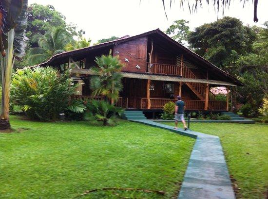 Coco Loco Lodge: El lobby