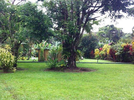 Coco Loco Lodge: El jardin