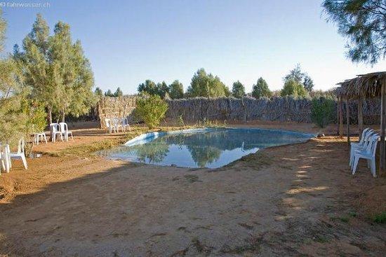 Campement Ain Essebat: Piscine
